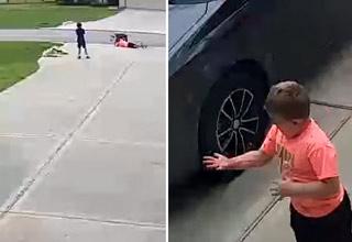 Boy stops pit bull attack with jujitsu choke hold - Video