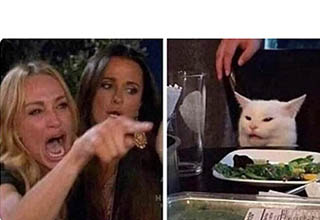woman yelling at cat meme template - smudge lord