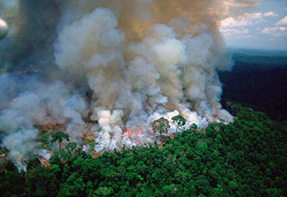 Amazon rainforest fires - image of the rainforest burning
