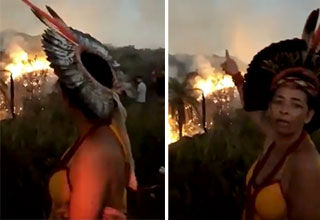 Indigenous Woman cries and says people have been burning the amazon
