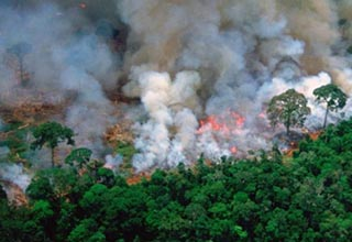 A photo showing the Amazon basin burning has been proven to be an old photo from 1989.