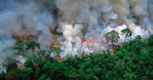 This photograph depicting the fires burning down the Amazon Rainforest has been shown to be from 1989 according to Snopes.