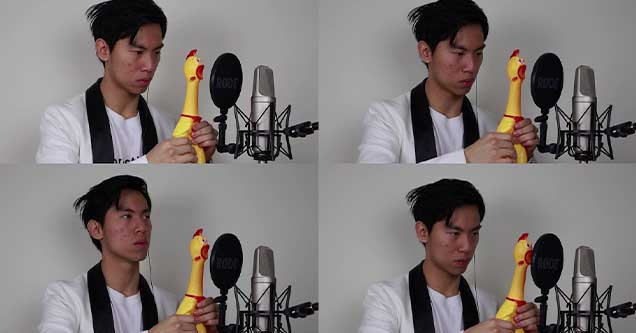 Crazy musician plays Pachelbel's Canon using rubber chickens