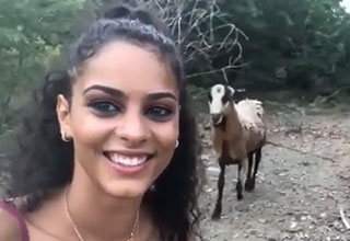 girl gets head-butted trying to take a selfie with a goat