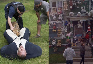 a man getting bit by a dog and a house covered in dolls