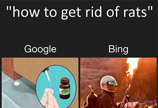 google vs bing memes that show ruthless bing is