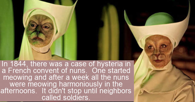 two cat nuns with a fact about nuns on top of them