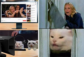 All the best woman yelling at a cat memes.