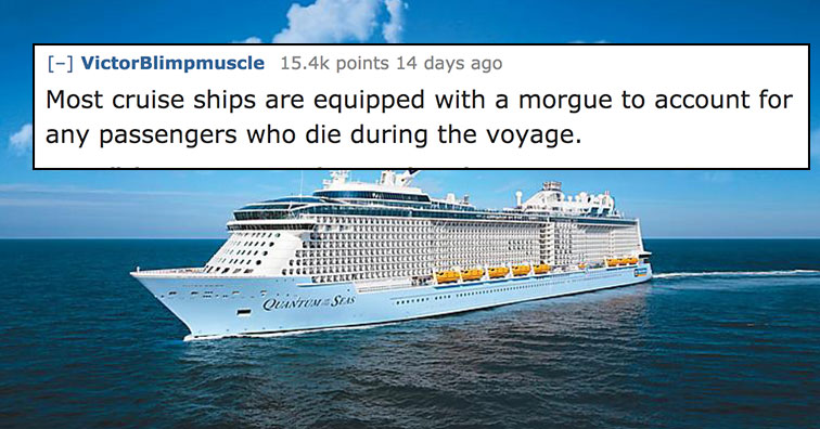 Reddit Users Share the Most Bizarre Facts They Know