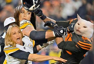 "Last night during the Thursday Night Football game between the Cleveland Browns and the Pittsburgh Steelers, Browns player <a href=""https://www.ebaumsworld.com/videos/myles-garret-hits-mason-rudolph-with-his-own-helmet/86116670/"">Myles Garrett ripped off Steelers QB Mason Rudolph's helmet</a> and smacked him on top of the head with it. If you <a href=""https://www.ebaumsworld.com/videos/the-full-brawl-that-erupted-after-myles-garrett-hit-mason-rudolph-with-his-helmet_1/86117000/"">watch the entire play</a> you can see that Rudolph instigated it by trying to take off Garrett's helmet first, but still what happened was uncalled for and horrible. The NFL has <a href=""https://www.cnn.com/2019/11/15/us/nfl-browns-steelers-helmet-brawl-myles-garrett-suspended/index.html"" target=""_blank"">suspended Myles indefinitely</a> and at least for the rest of the season, let's take a look at these extra spicy memes that have taken over the Internet following this shocking display."