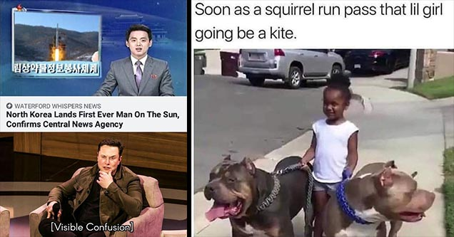 Elon Musk - North Korea lands first person on the sun - visable confusion meme - and - soon as a squirrel run past that lil girl going to be a kite - best memes ever.