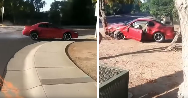 red mustang crashed into a tree