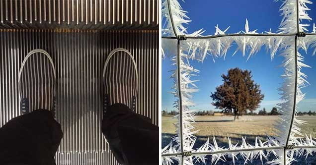 oddly satisfying alignment shoes escalator | cool pic of a tree in a fence