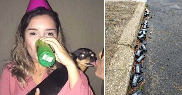 girl in a birthday hat and drinking while holding a Chihuahua   cringe cursed - Niche