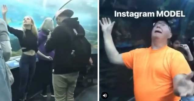 instagram model gets mocked by old man for her poses in a aquarium