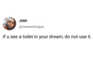if you see a toilet in your dream do not use it - tweet.