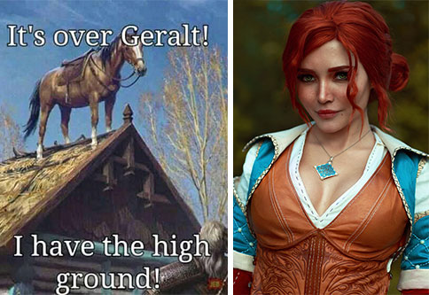 The Witcher became one of the biggest shows in the world and is already an instant fan favorite, so check out some of the best memes in all of Temeria that are not only for the Witcher fans.