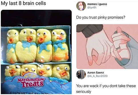 funny memes and pics to help make you laugh | my last 8 brain cells - My last 8 brain cells Marshmallow Treats O Pack Net Wt Wanna| anime aesthetic twitter header - memes i guess Do you trust pinky promises? Aaron Saenz You are wack if you dont take these