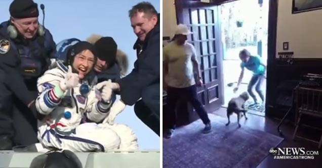 Astronaut Christina Koch greeted excitedly by her dog after spending a year in space   video of a dog so excited to see its owner after a year in space
