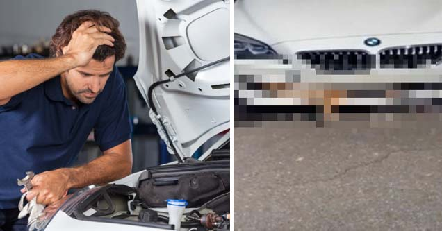 Woman comes to mechanic with 'radiator issues' | animal stuck in a womans car and she complains there is a radiator issue
