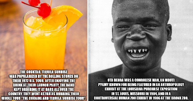 A gallery of random facts with pictures that will make you smart.