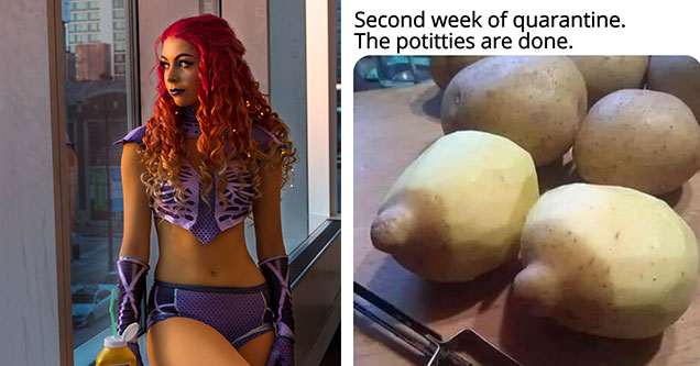 funny memes and pics to help make your day | red hair | yukon gold potato - Second week of quarantine. The potitties are done.