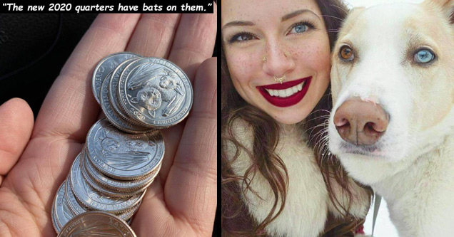 a new US quarter with a bat on it and a heterochromia dog