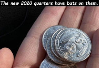a new US quarter with a bat on it