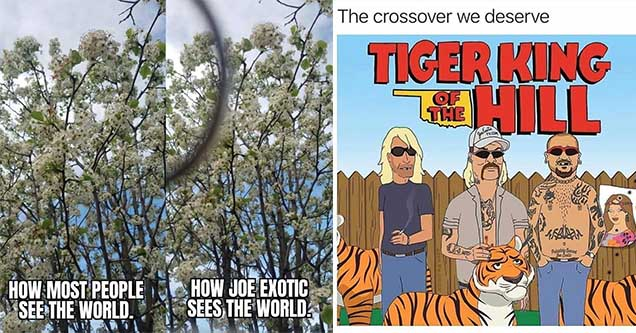The funniest tiger king memes from around the net. | tiger king - sunday people - How. Most People See The World. How Joe Exotic Sees The World, | tiger king - king of the hill - The crossover we deserve Tiger King