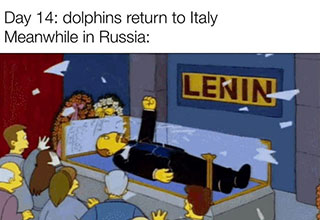 lenin breaking out of tomb in the simpsons - Day 14 dolphins return to Italy Meanwhile in Russia Lenin