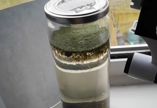 a jar of pond water with plants and life inside it | cool video showing a jar of pond water coming alive