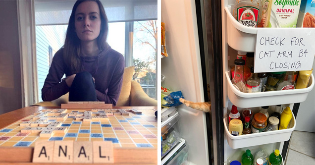 a couple playing scrabble with the word anal | refrigerator - Soymilk Original . Tomato Etchup Check For Cat Arm B4 Closing