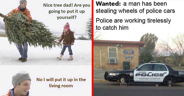 you going to put that tree up yourself - Nice tree dad! Are you going to put it up yourself? No I will put it up in the living room | cop car on cinder blocks - Wanted a man has been stealing wheels of police cars Police are working tirelessly to catch hi