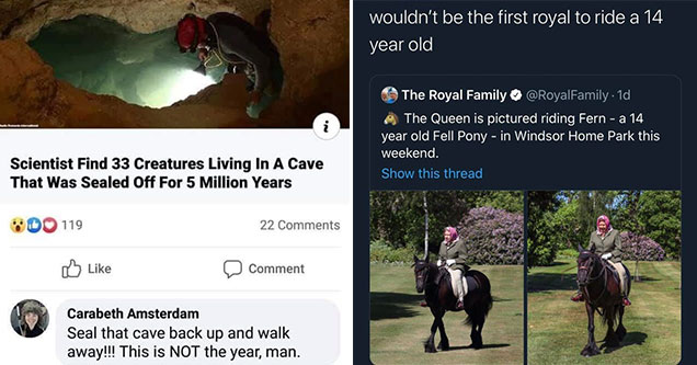 smartass comments that took people down a notch | photo caption - That comment! .N Scientist Find 33 Creatures Living In A Cave That Was Sealed Off For 5 Million Years 119 22 Comment Carabeth Amsterdam Seal that cave back up and walk away!!! This is Not t