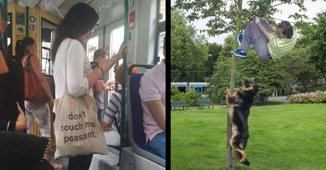 a girl holding a dont touch me pesant bag and a dog chasing a person up a tree