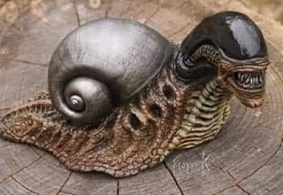 funny memes | snail xenomorph - When you're too busy worrying about Murder Hornets, here come the Snaliens ... 20