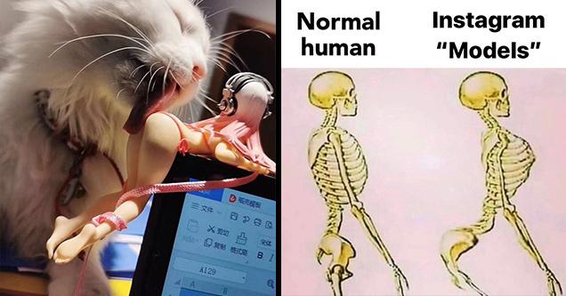 cat licking a doll | raheem sterling skeleton - Normal human Instagram