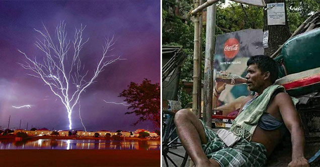 fun pics and cool randoms to make your day better | lightning shaped tree |