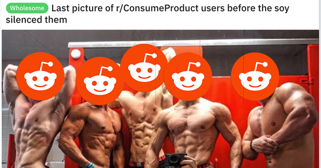 groups banned on reddit | last picture of r/consumeproduct useres before the soy silenced them