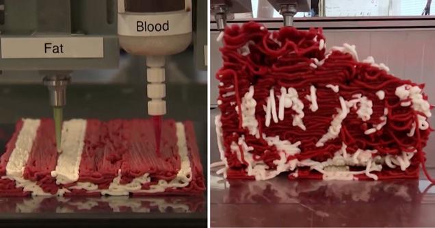 3D printed plant based steak