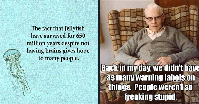 funny jellyfish quotes - The fact that Jellyfish have survived for 650 million years despite not having brains gives hope to many people. | back in my day we - Back in my day, we didn't have as many warning labels on things. People weren't so freaking stu
