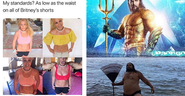 funny memes and pics - Britney Spear belly and Aqua Man | shoulder - My standards? As low as the waist on all of Britney's shorts 5923 | aquaman funny - apargo