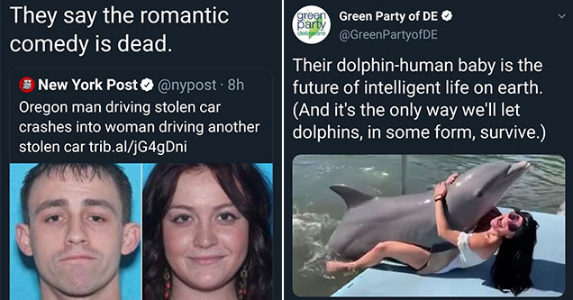 twitter memes -  funny romantic comedy meme and a woman and a dolphin