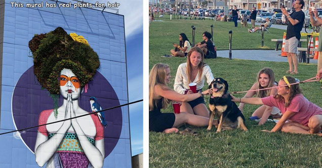 a mural with real tree leaves for hair | dog getting pet by a bunch of girls