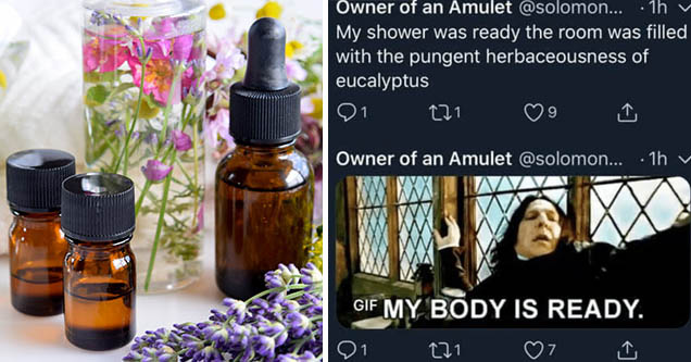 presentation - Owner of an Amulet ... 1h My shower was ready the room was filled with the pungent herbaceousness of eucalyptus 21 121 Owner of an Amulet ....1h v Gif My Body Is Ready. 121