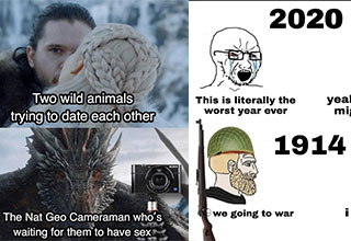 funny memes and pics - dank memes to make your day | geralt witcher memes - Two wild animals trying to date each other Sony The Nat Geo Cameraman who's waiting for them to have sex | other game leaks meme template - 2020 This is literally the worst year e