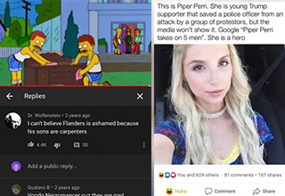 people who missed the joke -  Simpson joke about Falnders sons being carpenters and a Fake porn star PSA