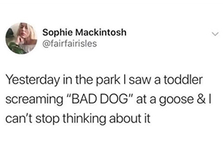 funny random memes | memes about forgetting to text back - Sophie Mackintosh Yesterday in the park I saw a toddler screaming