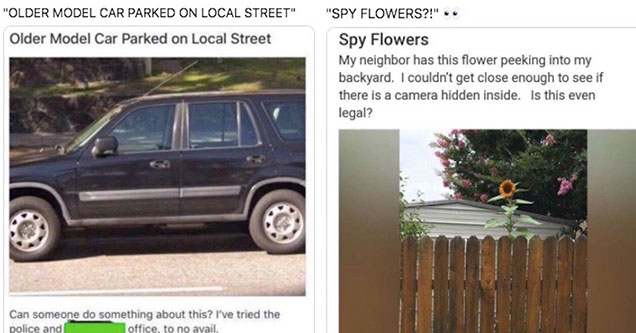 funny posts from the best of next door - ugly car parked on street and a sunflower spy plant.