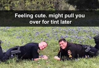"Are you <a href=""https://www.ebaumsworld.com/articles/the-feeling-cute-challenge-just-got-dark-when-correctional-officers-took-over/85938091/""><strong>feeling cute?</strong></a> Cuz we're feeling cute and we want the whole world to know it. Don't worry though, we wont be deleting these later, nor will we be adding to the already over used punchline. <br><br> If you don't already know the origin of <a href=""https://knowyourmeme.com/memes/feeling-cute-might-delete-later""><strong>""Feeling Cute Might Delete Later""</strong></a> we suggest you read up on your meme literature, before checking out these cute and <a href=""https://cheezburger.com/8180485/the-whole-damn-internet-is-feeling-cute-might-delete-later-and-weve-got-the-memes-to-prove-it""><strong>silly memes.</strong></a> <br><br> So go wash your face and put on something nice, because were about to get a little cuties, the only way we know how, with <a href=""https://www.ebaumsworld.com/pictures/felt-cute-might-delete-later-memes/85937352/""><strong>memes.</strong></a>"